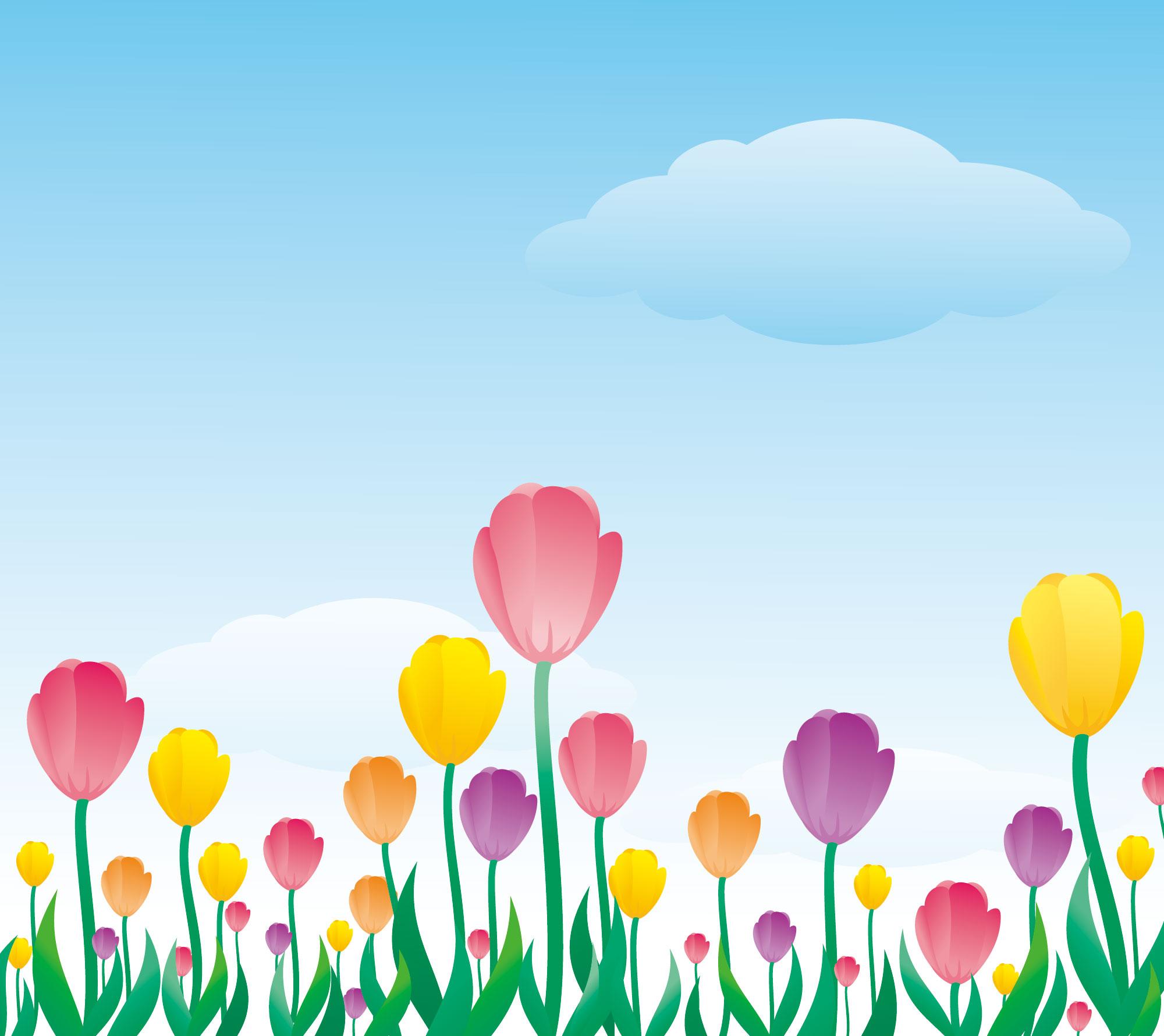 tulip009_1.jpg